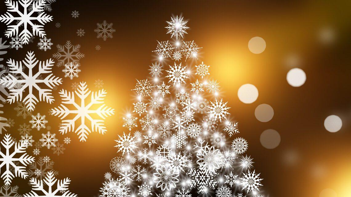 Die PH Selbsthilfe e.V. wünscht fröhliche Weihnachten und einen guten Rutsch ins Jahr 2021
